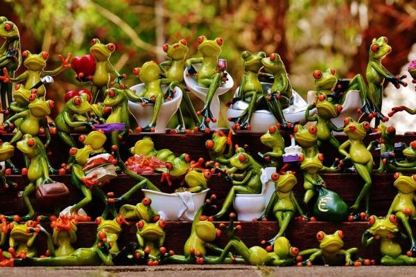 frogs-1372990-1920EC3E9155-B50A-6123-160F-9386E74B3FE4.jpg